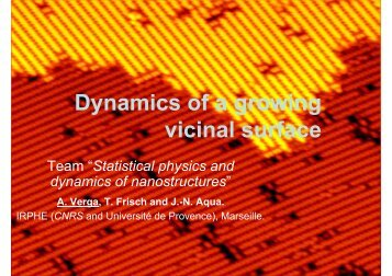 Dynamics of a growing vicinal surface - IM2NP