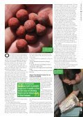Bait Management - Quest Baits - Page 2