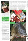 Bait Management - Quest Baits - Page 4