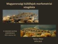 Magyarországi küllőfajok morfometriai vizsgálata