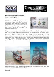 Coral Nursery Report - July 2011 - Eco Koh Tao