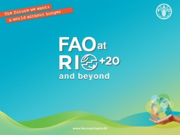 FAO at Rio+20 presentation template - CINU