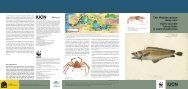The Mediterranean deep-sea: highly valuable ecosystems in need ...