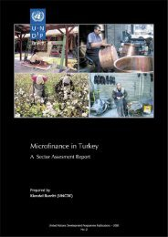Microfinance Sector Assessment Report - UNDP in Turkey