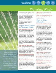 Watering Wisely - Tacoma-Pierce County Health Department
