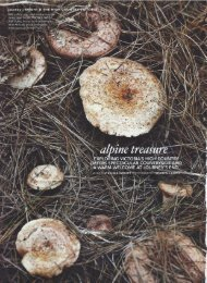 COUNTRY STYLE, JUNE 2012, Alpine Treasure - Tourism North East
