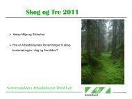 Trond Leet - Skogbrukets kursinstitutt
