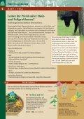 0905LexaHauptkatalog-2010.pdf - Seite 6