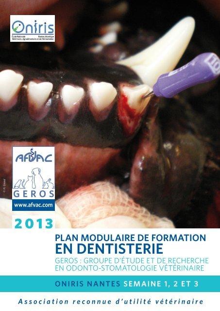 plan modulaire de formation en dentisterie - AFVAC