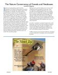 Vol. 32 No. 4 $5.00 - North American Bluebird Society - Page 6