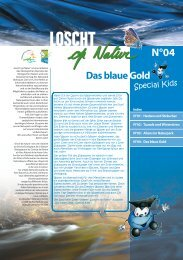 Das blaue Gold - im Naturpark Obersauer