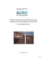 informe de resultados de muestreo de suelos y superficies de ...