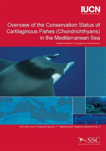 iucn mediterranean sharks (pdf) - The Shark Trust