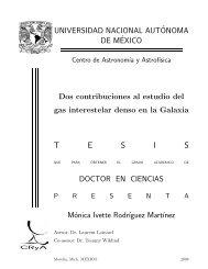 T E S I S - UNAM