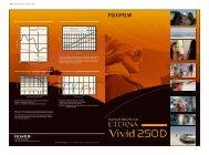 FUJIFILM_ETERNA Vivid 250D_表面 * Spatial frequency ...