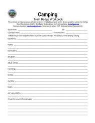 Camping MB Workbook.pdf - ScoutLander