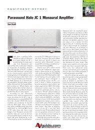 Parasound Halo JC 1 Monaural Amplifier - AllegroSound