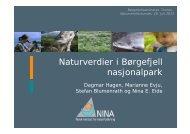 Foredrag Dagmar Hagen, NINA: Naturverdier i Børgefjell - Norges ...