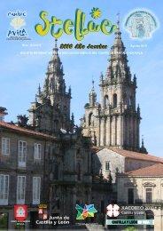 2010 Año Jacobeo - Asociación Amigos del Camino de Santiago en ...