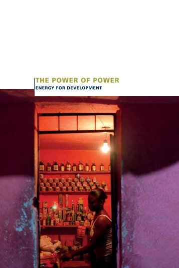 The power of power booklet - FMO