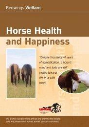 Happy Horse Lft 13/10/04 - Redwings