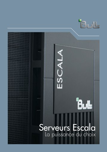 Serveurs Escala - Bull