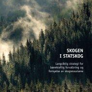 Last ned Statskogs skogstrategi for utskrift her (pdf, 6 MB)