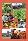 Soberanía Alimentaria - Grassroots International - Page 6