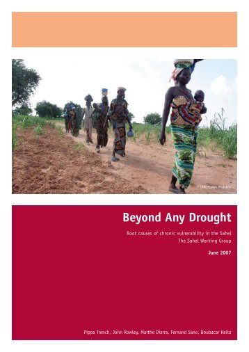 Beyond Any Drought - IIED pubs