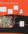 Kan matspjälkning vara roligt? - Natur och Kultur - Page 5