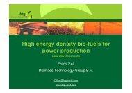 ENEF Frans Feil bio-fuels [iba na čítanie]