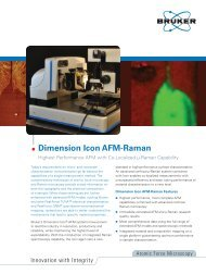 Dimension Icon Atomic Force Microscope with Co ... - Bruker
