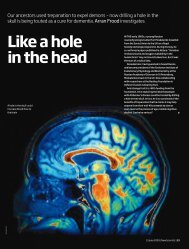 Like a hole in the head - Beckley Foundation
