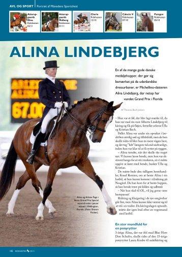 AlinA lindebjerg - Dansk Varmblod