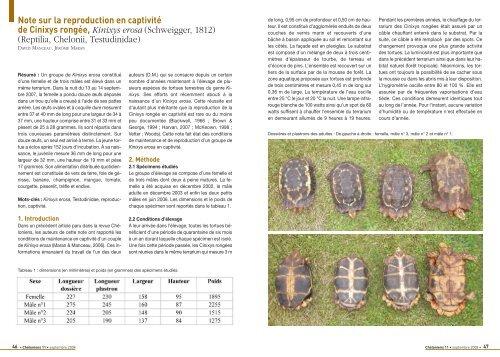 Reptilia, Chelonii, Testudinidae - Association du refuge des tortues