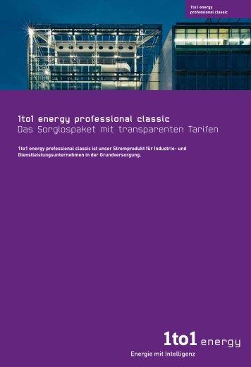 Broschüre 1to1 energy professional - bei der IBH AG