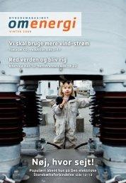 Vinter 2009 - Energinet.dk