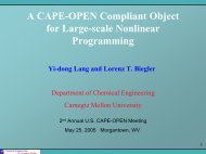 4.3 A CAPE-OPEN Compliant Object for Large-scale Nonlinear ...