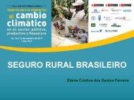 seguro rural brasileiro - Proyecto de Seguros para la adaptación al ...