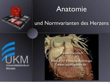 Anatomie und Normvarianten des Herzens