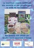 NOURRITURES CONGELÉES - Site des Marques - Page 3