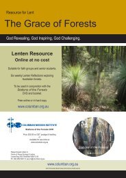 The Grace of Forests Lenten resource - St Columbans Mission Society
