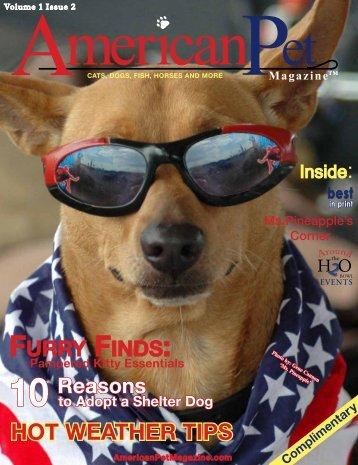 Volume 1 Issue 2 Et MericanP - American Pet Magazine ...