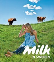 Milk in Sweden