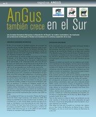 Angus también crece en el Sur - Asociación Argentina de Angus