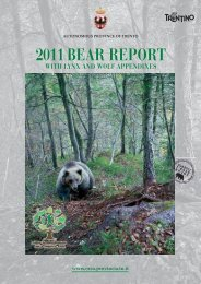 2011 BEAR REPORT - Orso