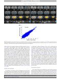Anticorrelated resting-state functional connectivity in awake rate ... - Page 7