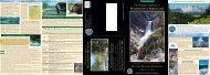 24383 BigSkySummer2002 - Wilderness Medicine