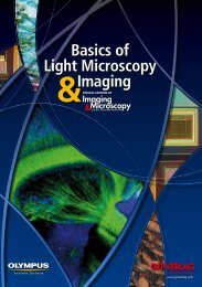Basics of Light Microscopy Imaging - Advanced Optical Microscopy ...