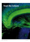 Basics of Light Microscopy Imaging - Advanced Optical Microscopy ... - Page 6